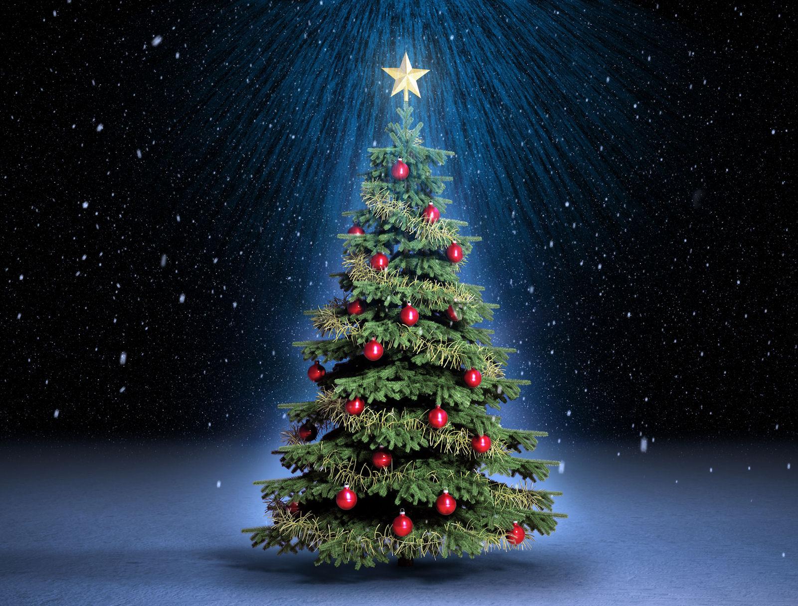Pgina de Navidad